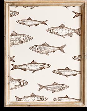 Viele kleine Fische in einem Bilderrahmen
